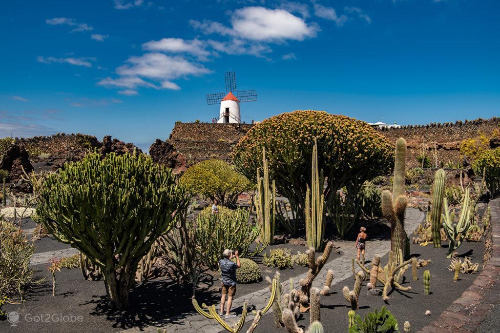 Jardin del Cactus, Lanzarote, Canárias, Espanha