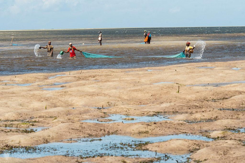 Pesca à rede, ilha Quirimba, Moçambique