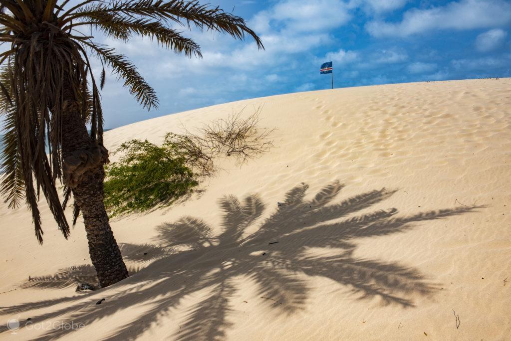 Palmeira, Ilha da Boa Vista, Cabo Verde, Sal, a Evocar o Sara