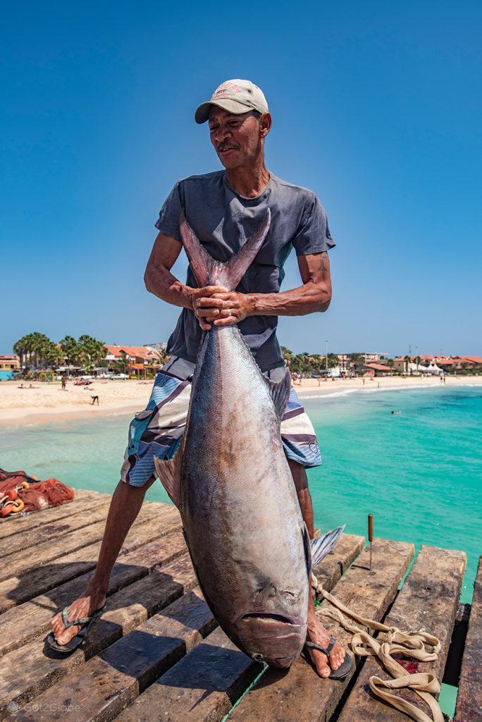 Santa Maria, ilha do Sal, Cabo Verde, atum