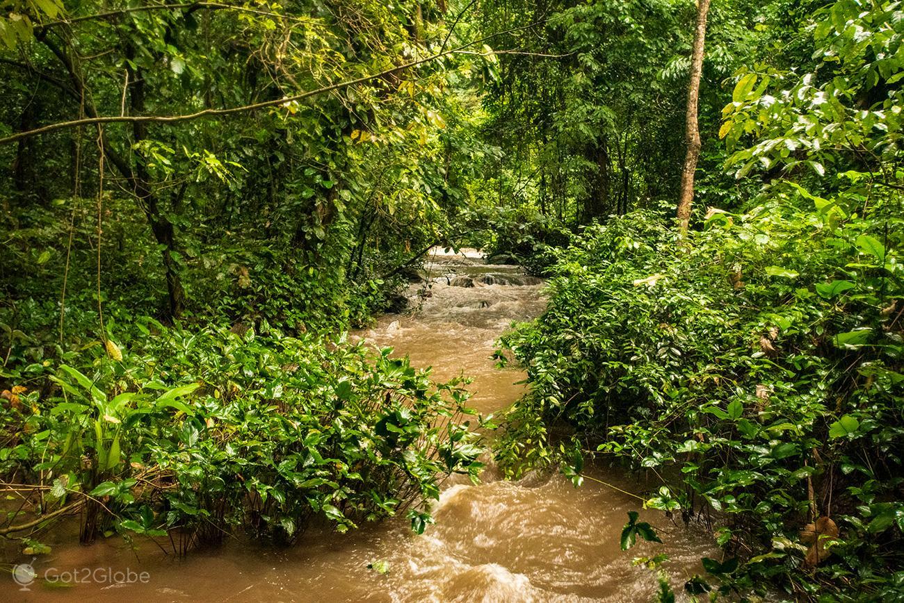 Torrente gerada pelas Wli Falls, Volta, Gana