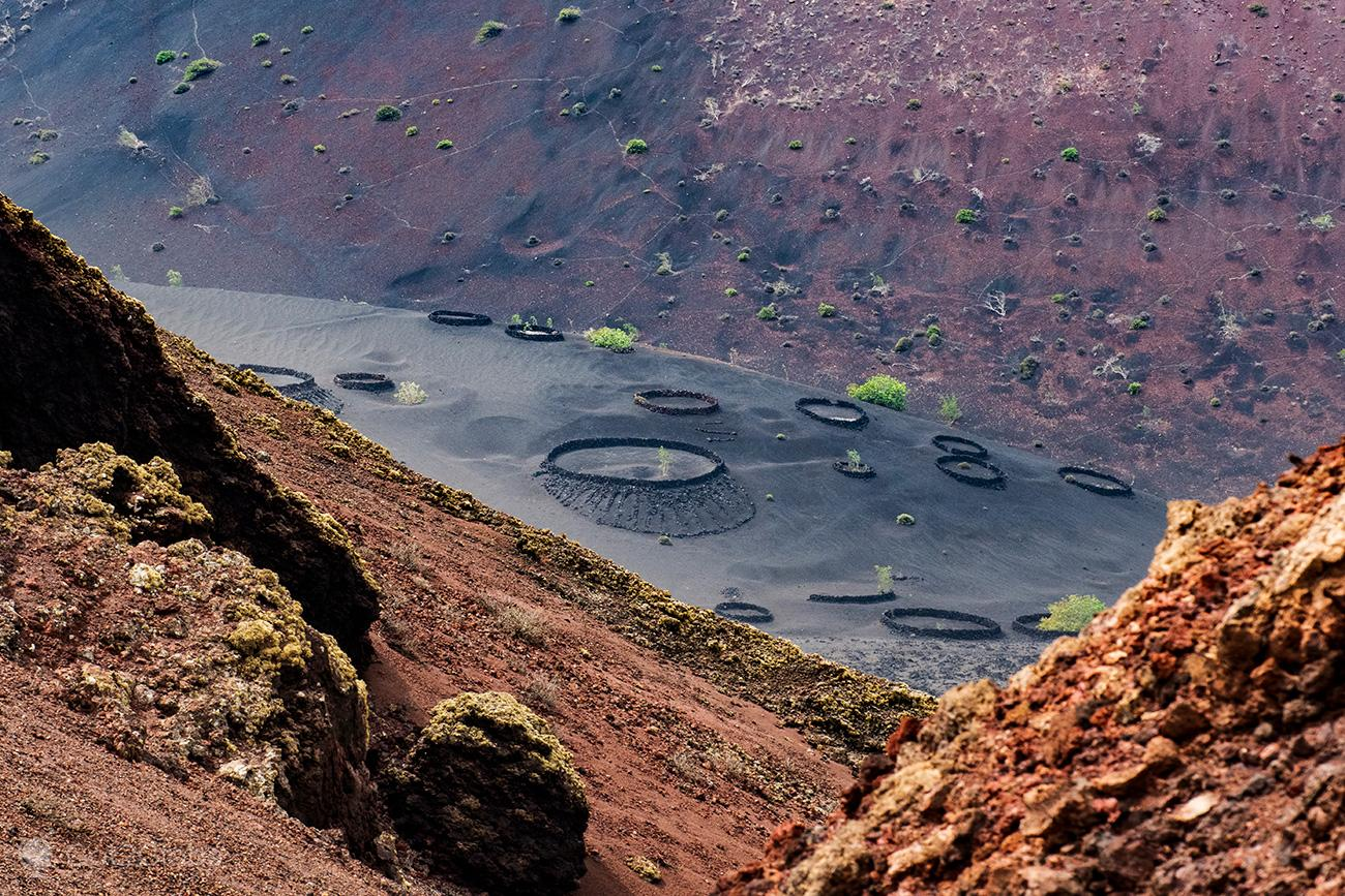 PN Timanfaya, Montanhas de Fogo, Lanzarote, vinhedos sobre lava