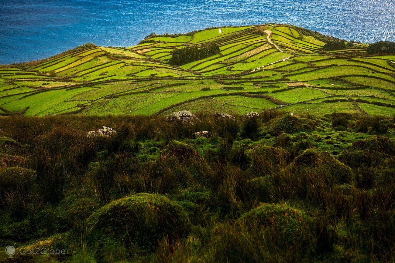 Ilha do Corvo, Açores, retalhos rurais