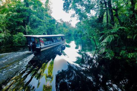 PN Tortuguero, Costa Rica, barco público