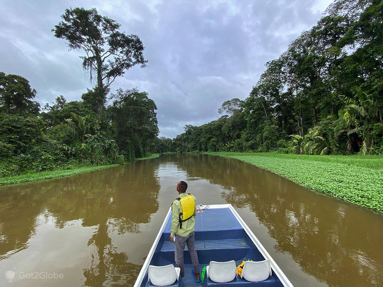 Guia, PN Tortuguero, Costa Rica