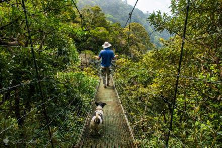 Ponte Suspensa, Cabro Muco, vulcão Miravalles